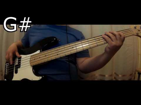Hillsong Worship - Everyday - Bass Cover