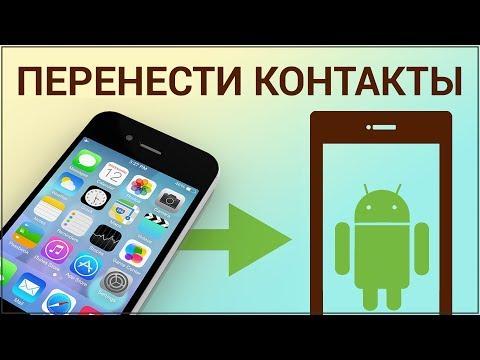 Как перенести контакты с IPhone на Android? Сохраняем контакты в Google, синхронизируем их с Андроид