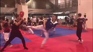 Todays Taekwondo Greece Seminar 2018