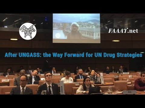 After UNGASS: the Way Forward for UN Drug Strategies