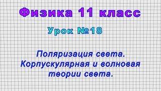 Физика 11 класс (Урок№18 - Поляризация света. Корпускулярная и волновая теории света.)