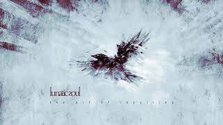Lunatic Soul - The Art of Repairing (from Under the Fragmented Sky)