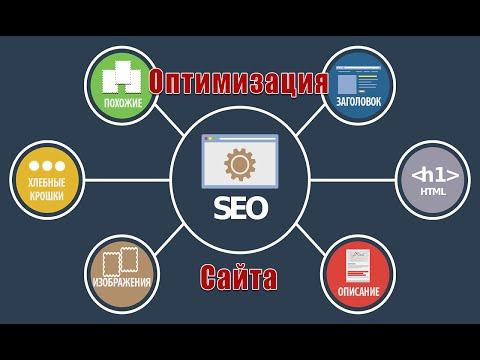 WordPress поисковые системы