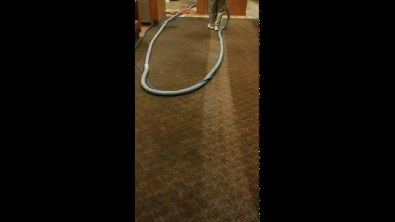 Carpet Steam Cleaner Eugene Oregon Carpet Vidalondon