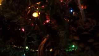 Yule/Christmas Tree and Altar Thumbnail