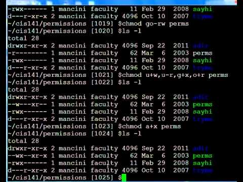 Linux / UNIX permissions and chmod