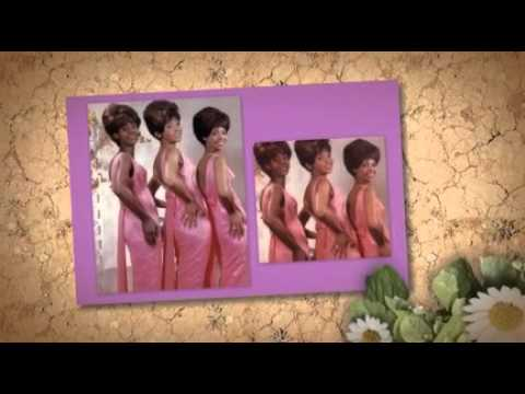 THE VELVELETTES  A Bird In The Hand (is Worth Two In The Bush)