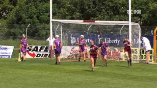 Liberty Insurance Camogie Championship Round 1 Galway v Wexford