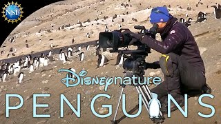 Behind the scenes in Antarctica with the National Science Foundation and Disneynature Penguins