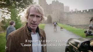 """Собака Фрейя из фильма """"Трансформеры: Последний рыцарь"""""""
