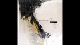 Assemblage 23 - Damaged (lyrics)