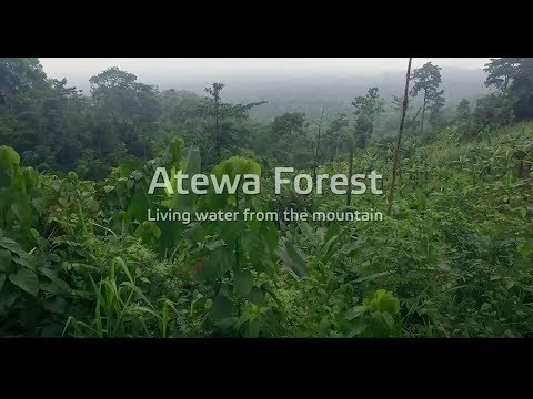 Atewa Till Eternity - Obour, Nero X, MzVee, Sherifa Gunu, Kojo Rana, Kuami Eugene and Heleen
