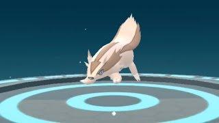 New Gen 3 Pokemon Go Zigzagoon to Linoone Evolution Showcase Pokédex 263 and 264