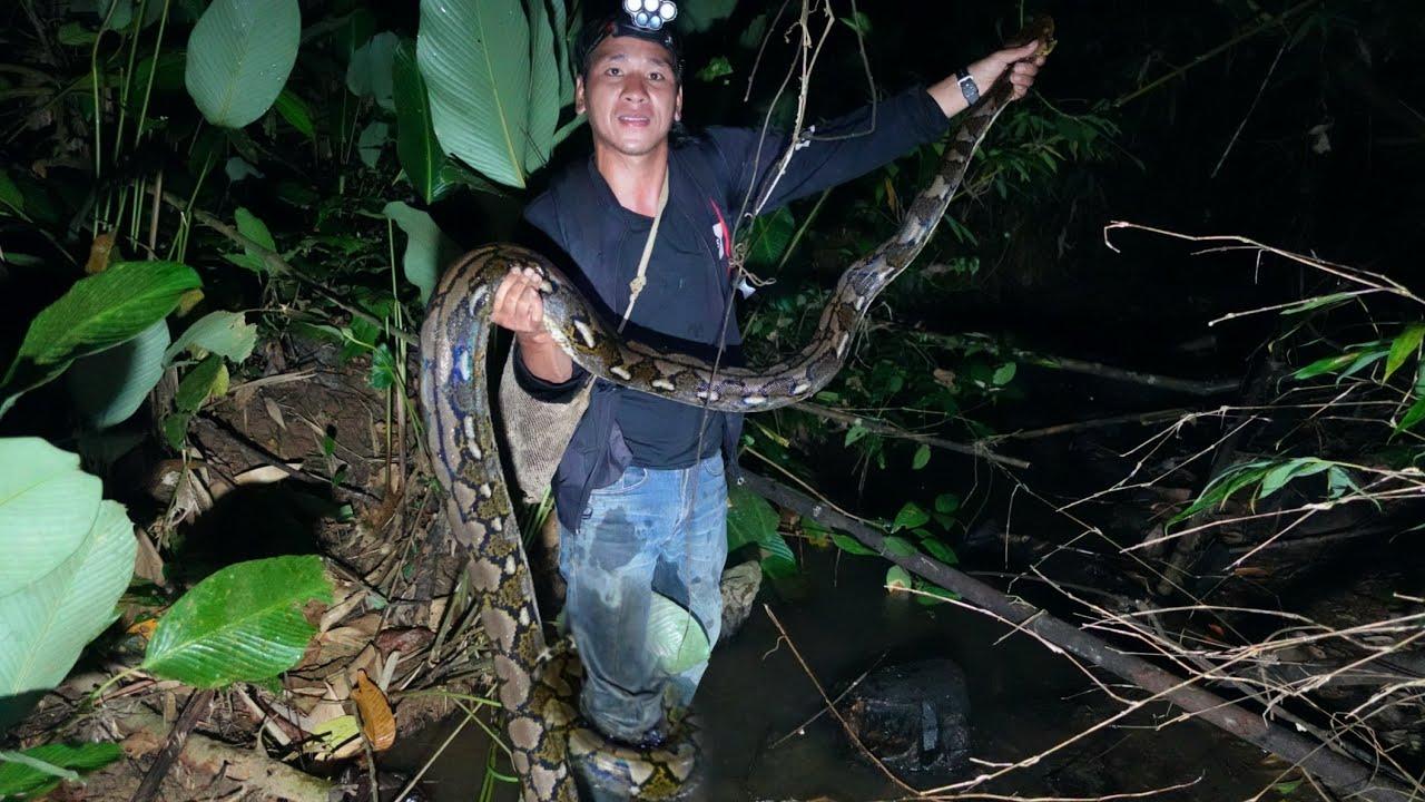 เข้าป่าคนเดียวเกือบโดนงูเหลือมกินทั้งเป็น.![ອາຄານ້ອຍ]