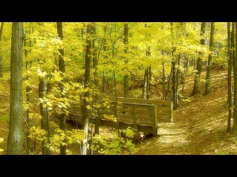 Altus - Autumn Breeze (2005) COMPLETE ALBUM