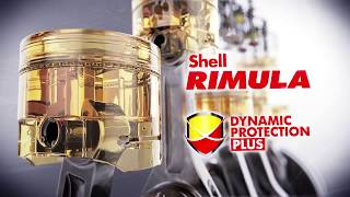 Dynamic protection plus Final  Shell Thailand