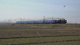 蒸気機関車SL(10) ~SL北びわこ1号 C56牽引~ ※汽笛注意