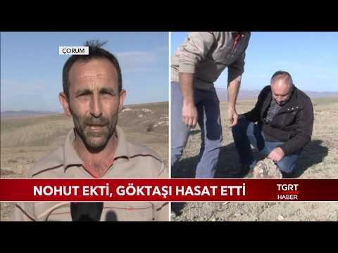 Türkiye'nin 3'üncü Büyük Göktaşı Çorum'da Bulundu