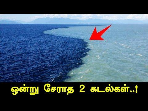 Gulf Of Alaska - Reason Behind Why Two Oceans Doesn't Merge