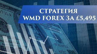 Разбор стратегии WMD Forex за £5,495