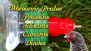 Abreuvoir poules (Poussins) simple à réaliser 1/3.  Bouteilles de 1 litre 1/2.