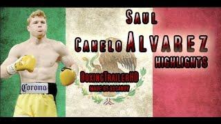 SAUL CANELO ALVAREZ HIGHLIGHTS 2016 [HD]