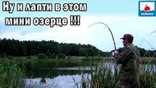 Кто сказал что крупного карася тут нет и земля не работает Рыбалка на поплавки