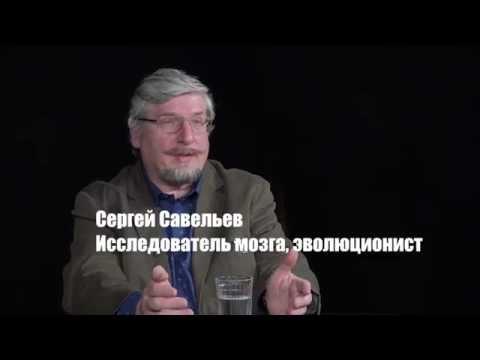С.В. Савельев: не