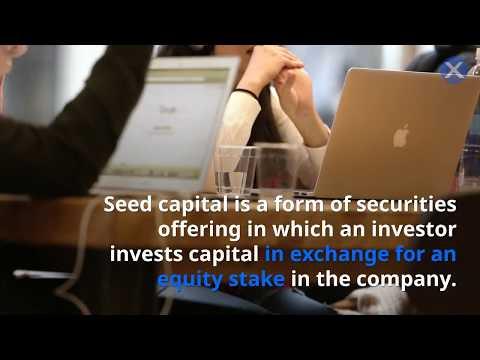 What is Seed Money? | startupXchange