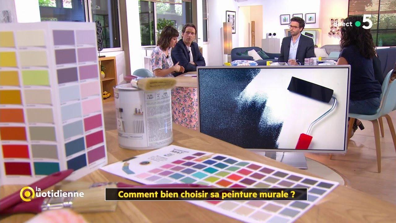 Comment Choisir Sa Peinture De Cuisine comment bien choisir sa peinture murale ?