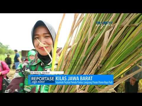 Kabupaten Bandung Menolak Impor Beras Dari Thailand Dan Berita Lainnya