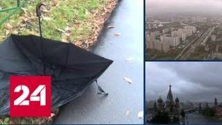 МЧС: Подмосковье в ближайшие часы ожидает дождь и гроза - Россия 24
