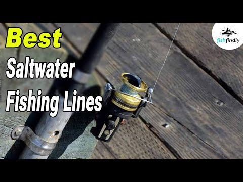 Best Saltwater Fishing Line In 2020 – Latest Products Review!