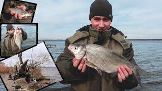 МЕГА ФИДЕР!Ловля ЛЕЩА!Весенняя рыбалка 2020!