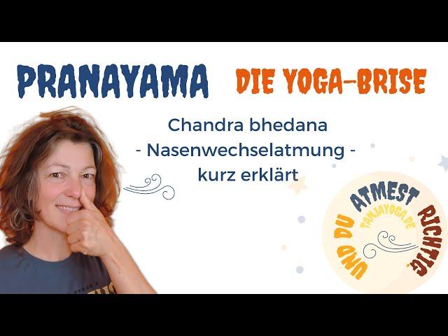 Atme richtig. Ich zeige dir die Mondatmung. #YogaBrise mit Nasenwechselatmung