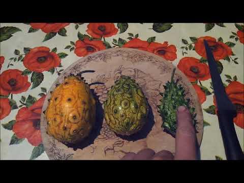 Кивано - выращивание, урожайность, дегустация. Мелано и рогатая дыня.