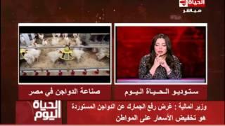 وزير المالية: رفع الجمارك عن الدواجن المستوردة لتخفيض الأسعار على المواطن   المصري اليوم
