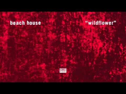 Beach House - Wildflower