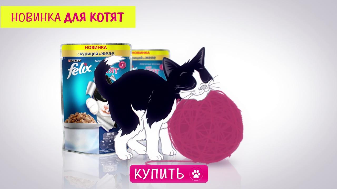Купите сухой корм для кошек purina one в официальном интернет-магазине purina. Отличные цены. Описания и отзывы. Доставка по всей россии.
