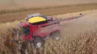 Wolf Farms corn harvest, was filmed LIVE via drone Oct 7th 2016 by @TheChadColby
