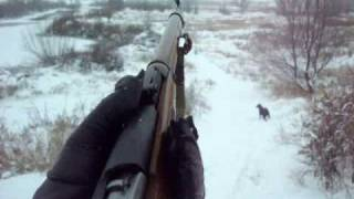 M91/30 Mosin Nagant Shoot