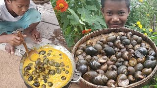 Special Cooking Snail Curry / Eating Snails Curry