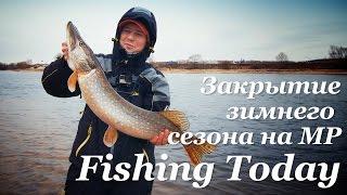 Закрытие зимнего сезона на МР. Щука 3350 - Fishing Today
