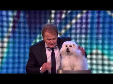 Ο σκύλος που μιλά στο Britain's Got Talent 2015!