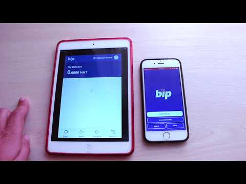 How To Use BIP Minter Wallet