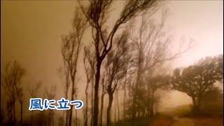 坂本冬美 風に立つ カラオケ