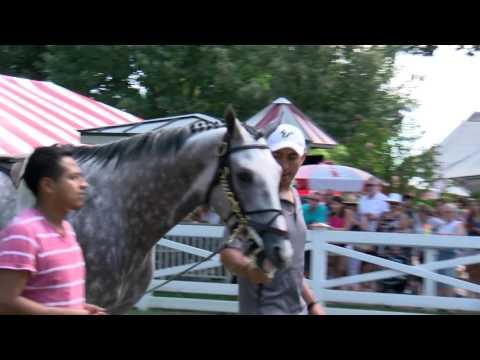 Creator Schools at Saratoga Race Course