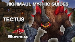 Tectus Mythic Guide by Method