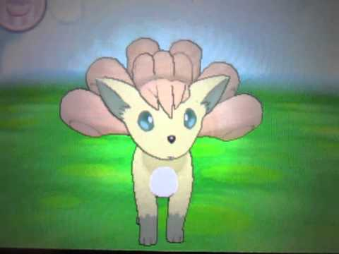 Shiny Vulpix Pokemon X