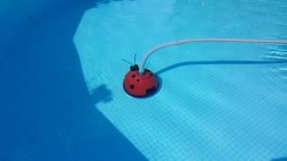 Poolkäfer im Einsatz